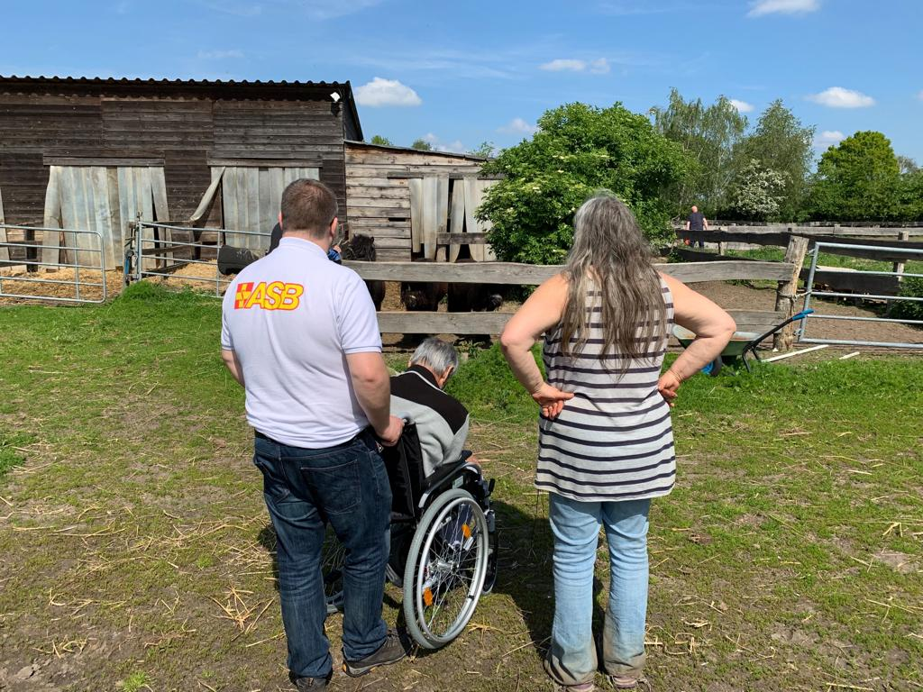 Wunscherfüller Benjamin Schiller und Arche-Chefin Marian Korroch begleiten Ali Machkamon zur Pferdekoppel, wo die Shetlandponys schon auf ihn warten.JPG
